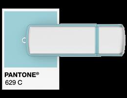 Pantone® Referentie USB stick