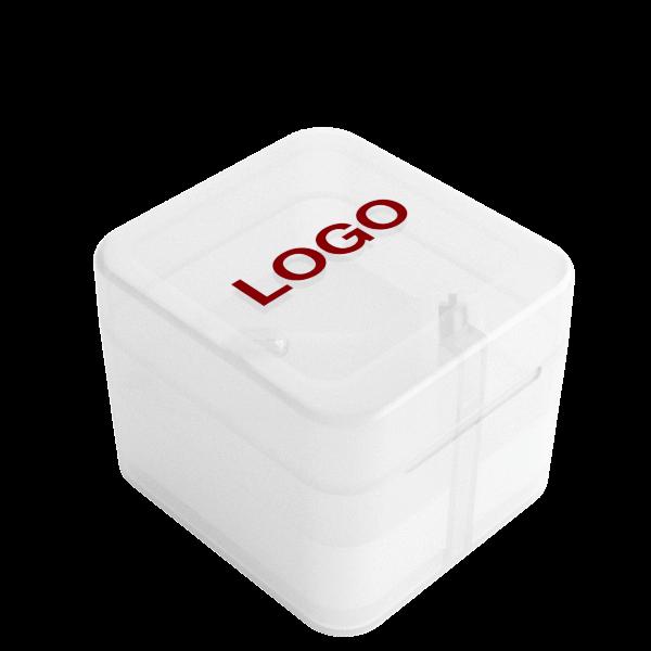 Vista - Gepersonaliseerde USB Auto Opladers